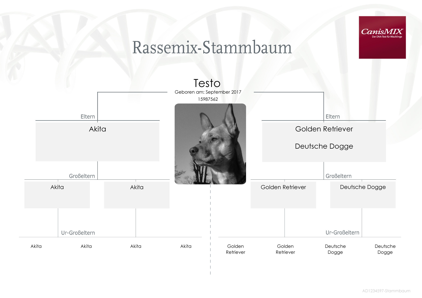 Unique Preis Zertifikat Proben Component - FORTSETZUNG ARBEITSBLATT ...